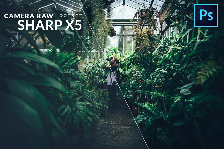15 Camera Raw Filter Preset Pack 2017