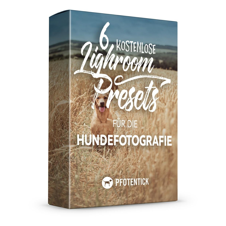 Pfotentick – Lightroom Preset Pack No. 1
