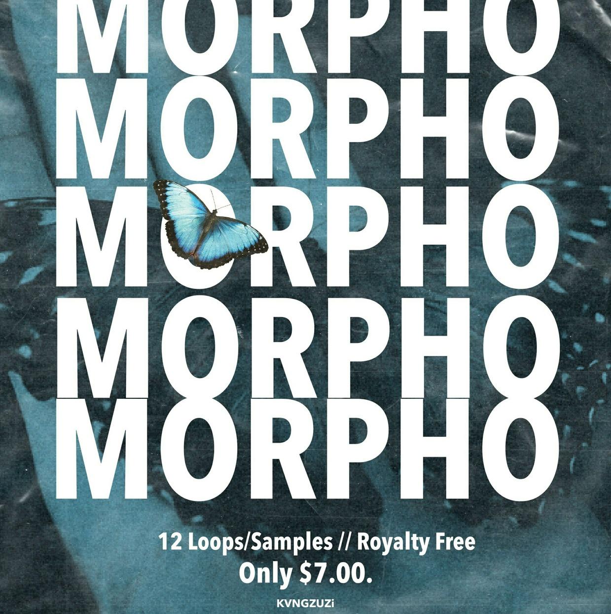 Morpho (Loop/Sample Kit)