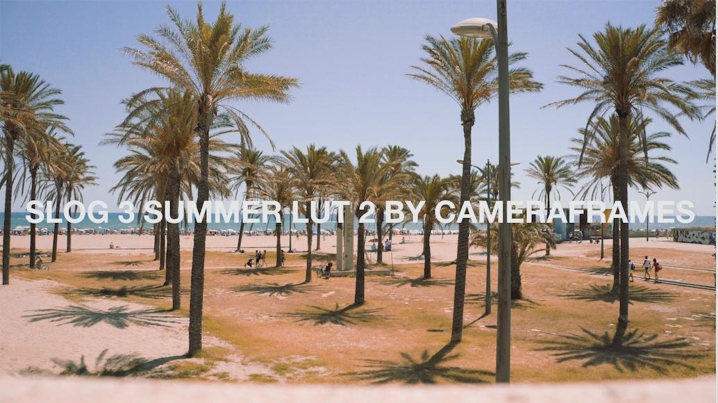 Slog3 Summer LUT 2 by CameraFrames