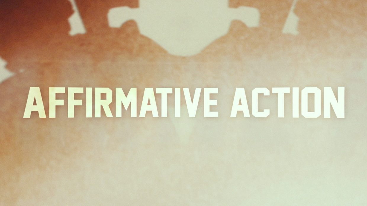 Affirmative Action Project Files (My Part)