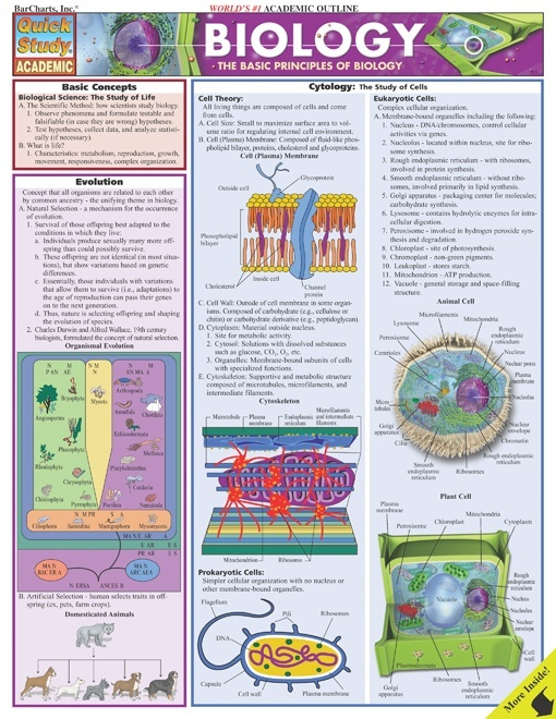 Biology - Quick Review Study Guide and Handout