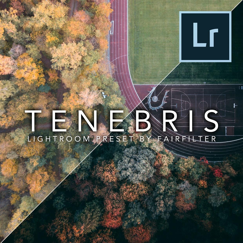 TENEBRIS Lightroom Preset