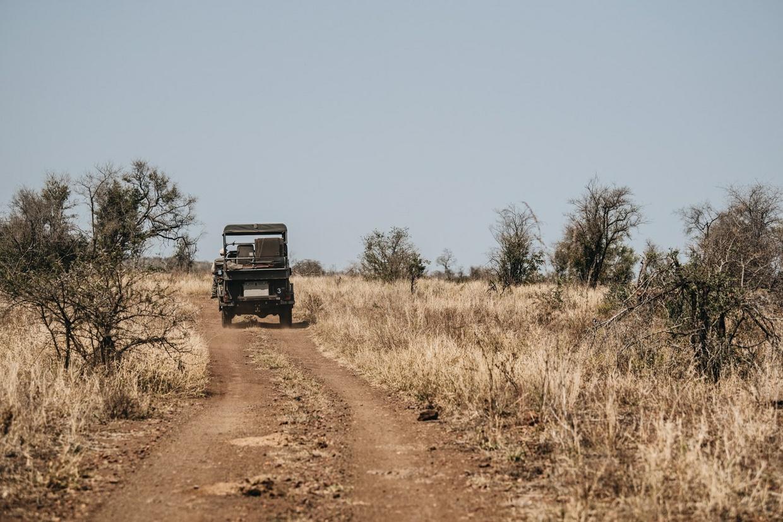 Safari 17 - Defender