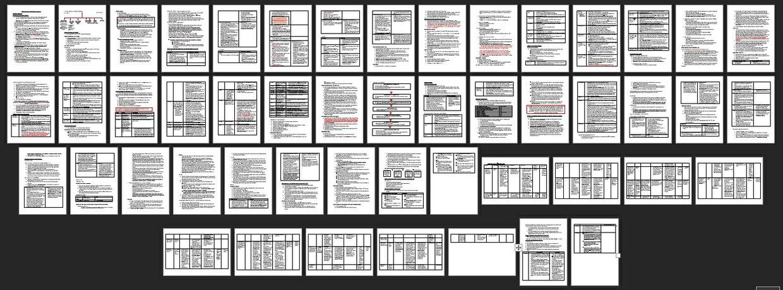 HSC Modern History Study Notes - Germany