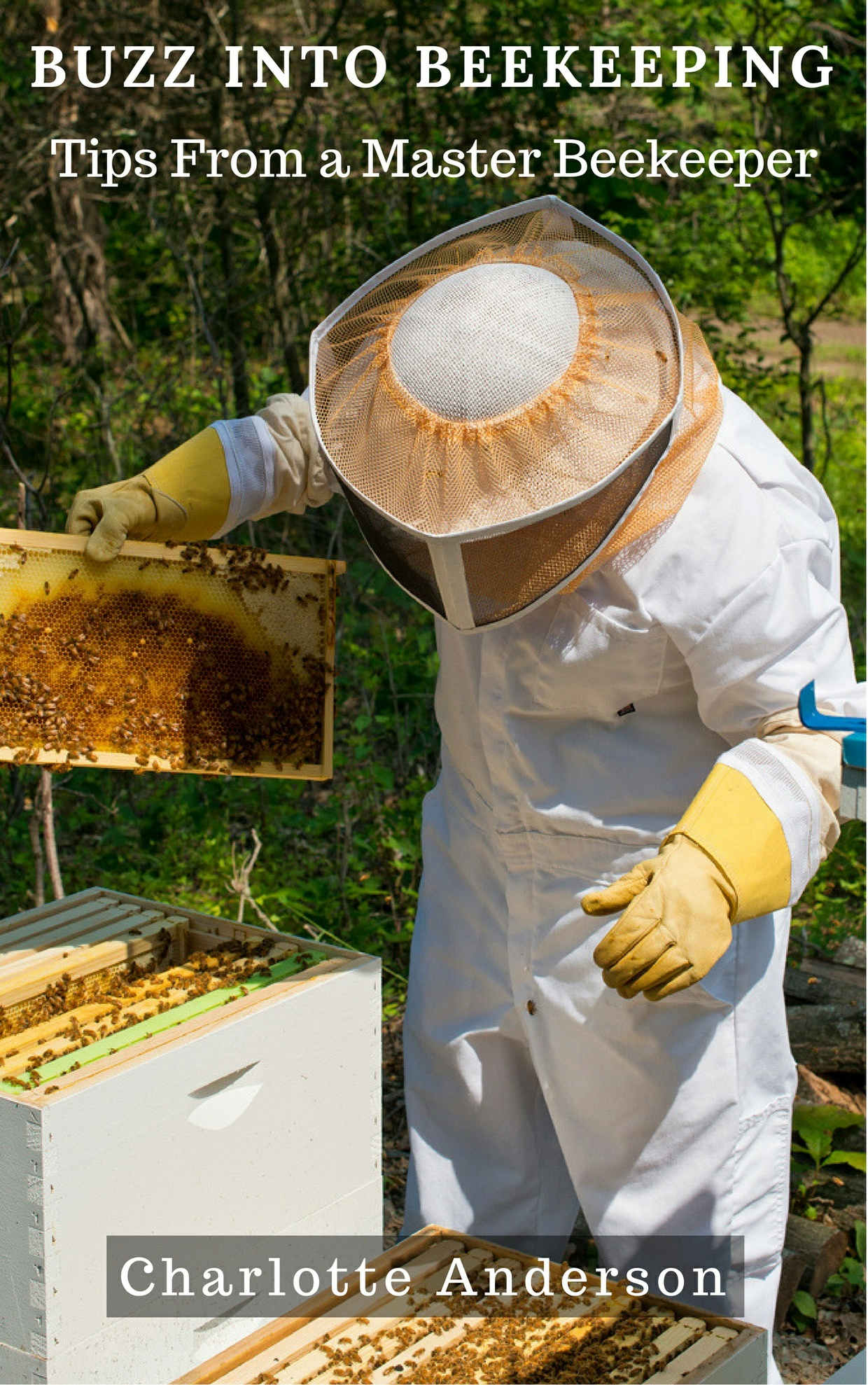 Buzz into Beekeeping - Tips From a Master Beekeeper