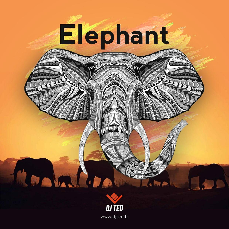 ELEPHANT 138.143 BPM