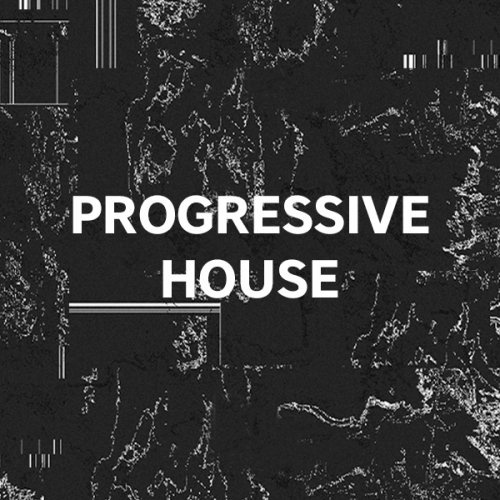 Professional Progressive House Template 01
