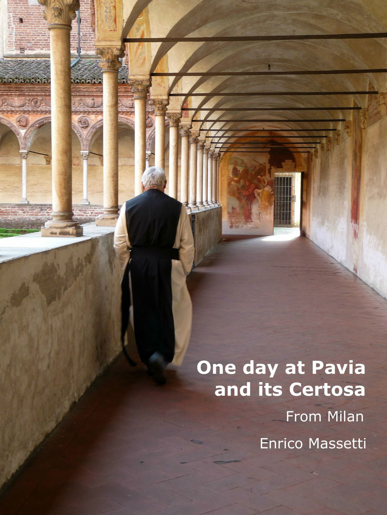 One Day in Pavia PDF