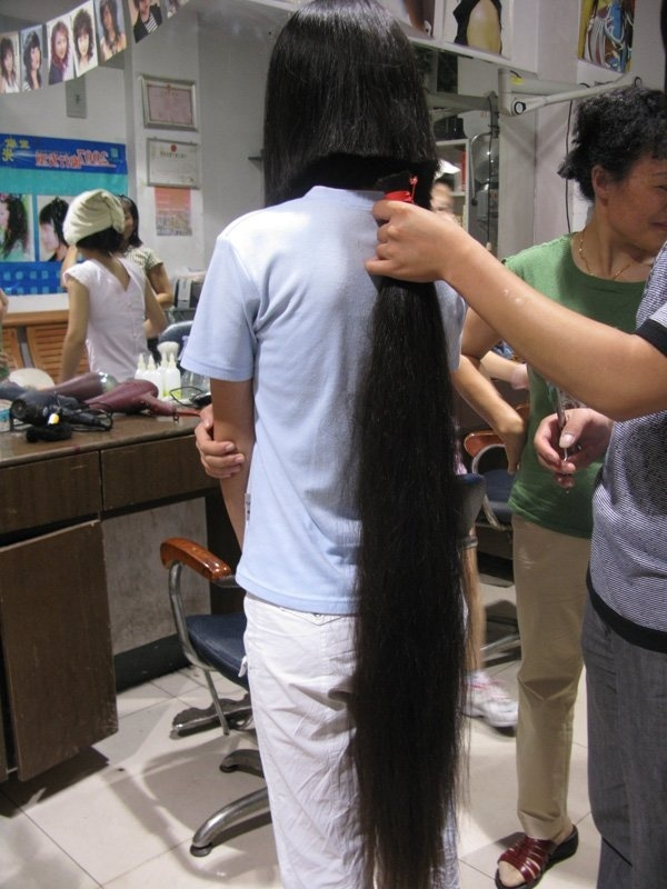 4 women's longhair cut together
