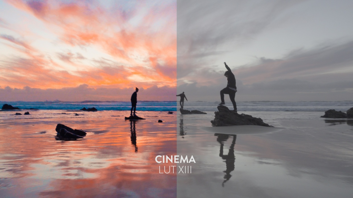 Bounce Color LUT Pack Bundle - Every LUT Pack for Every Camera