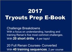 2017 Tryouts Prep E-Book
