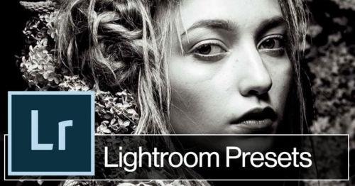1500 Photo Presets for Lightroom