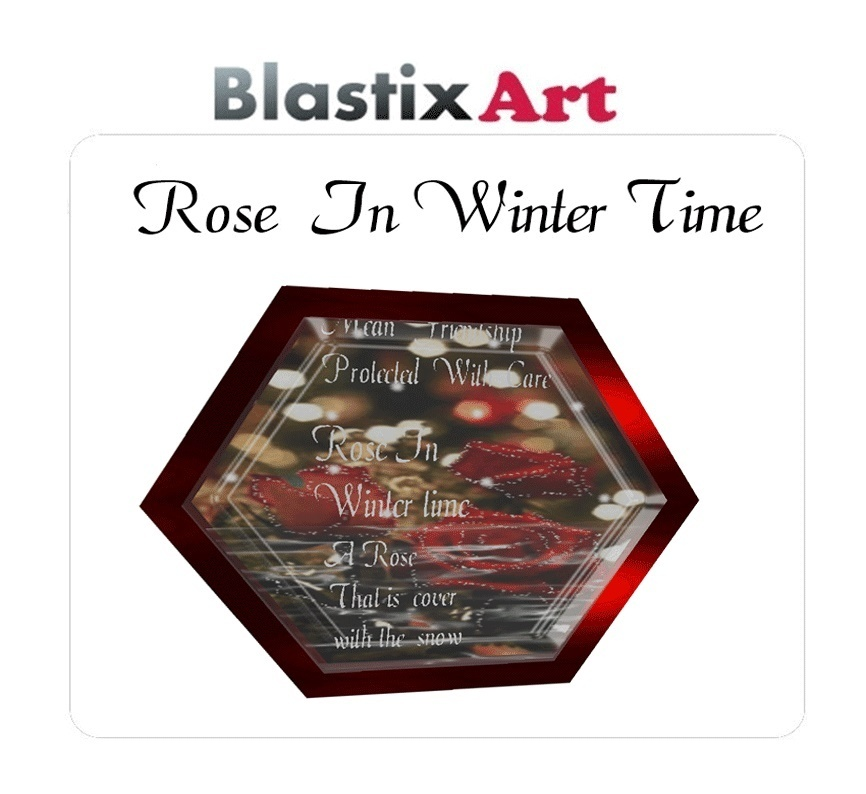 A winter Rose Frame