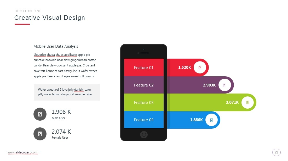 Slide Project Presentation Template