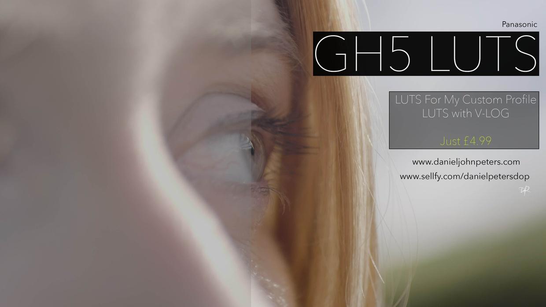 GH5/Varicam V-LOG LUTS