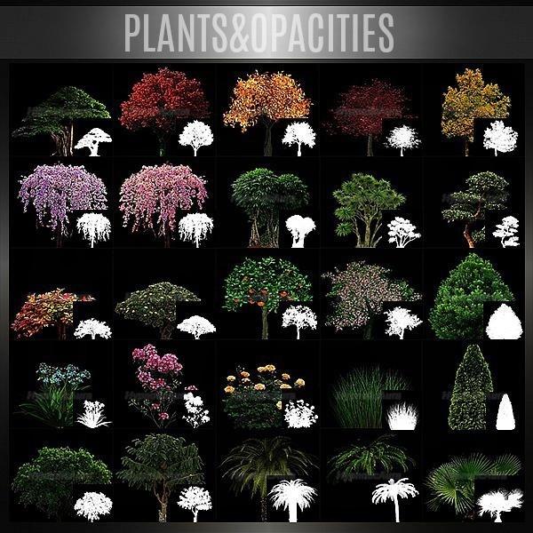 OFFER-PLANTS&SEA,SAND,FLOOR TILES-235 TEXTURES
