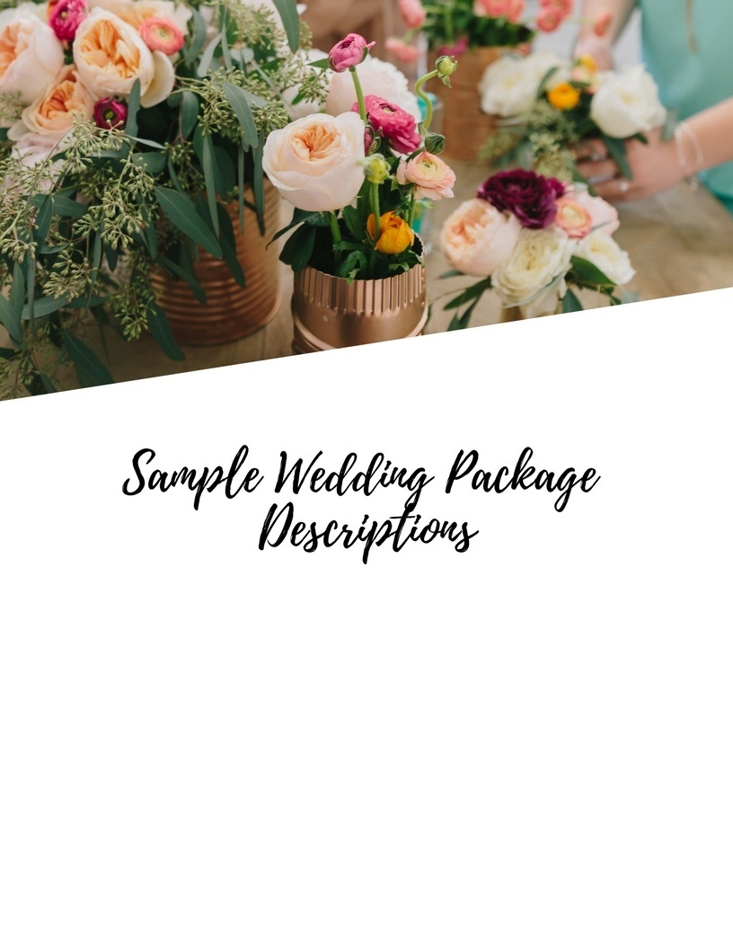 WEDDING BUSINESS MINI E-COURSE. Pricing Examples & Editable Wedding Packages.