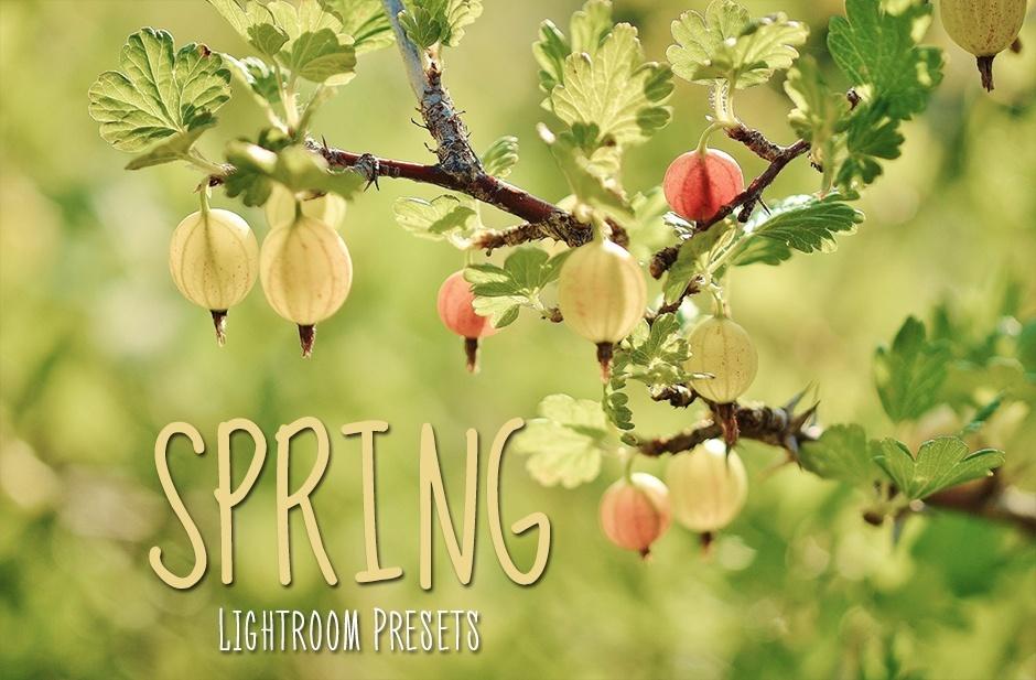 50 Spring Lightroom Presets