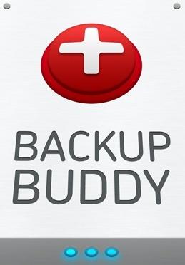 iThemes BackupBuddy 8.0.0.1 Plugin WordPress