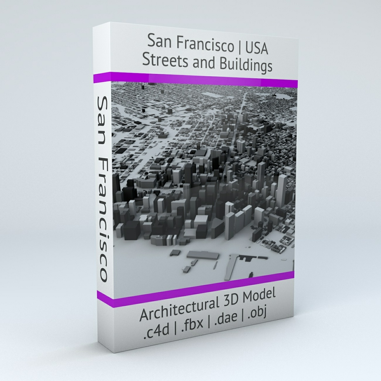 San Francisco Streets and Buildings Architectural 3D Model