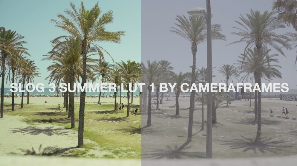 Slog3 Summer LUT 1 by CameraFrames