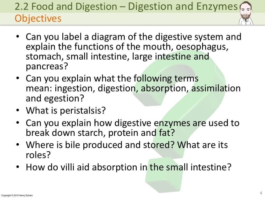 digestion and enzymes Dr mercola's full spectrum digestive enzymes has the right mix of enzymes to help break down your food and give you better digestive function.