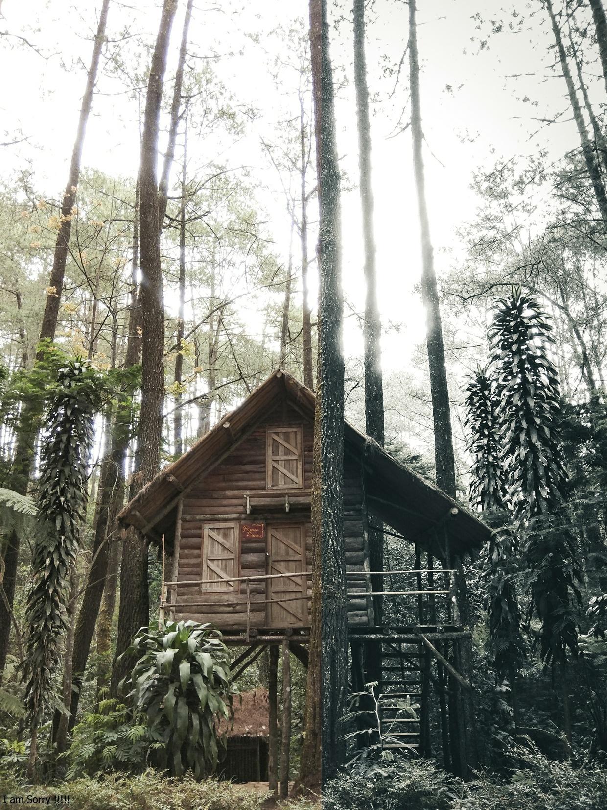 Bayu Anggoro Lightroom Presets