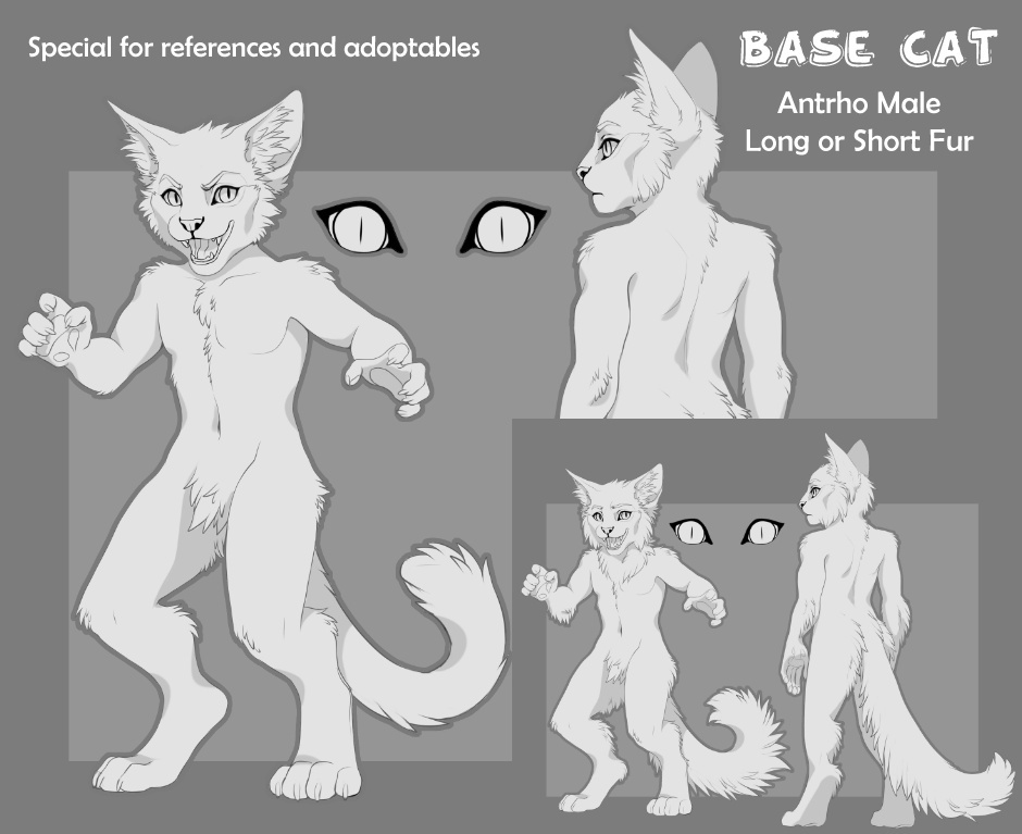Base Cat (Antrho Male)