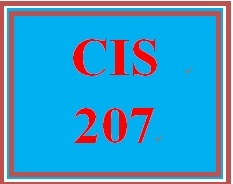 CIS 207 Week 5 Individual: Career Plan