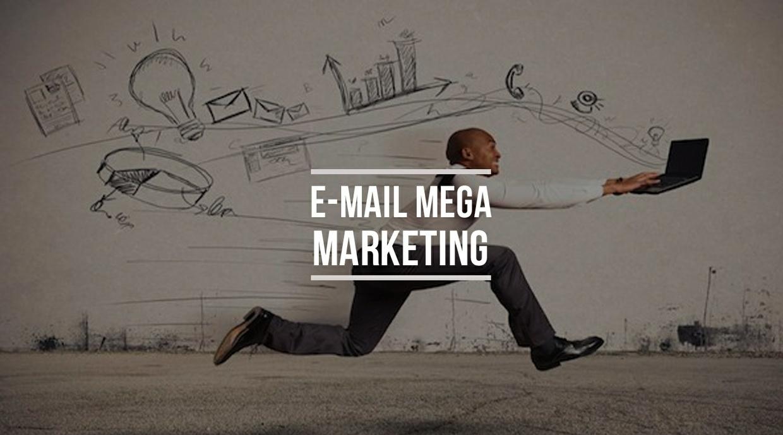 50,000 Consumer/Backer Email List