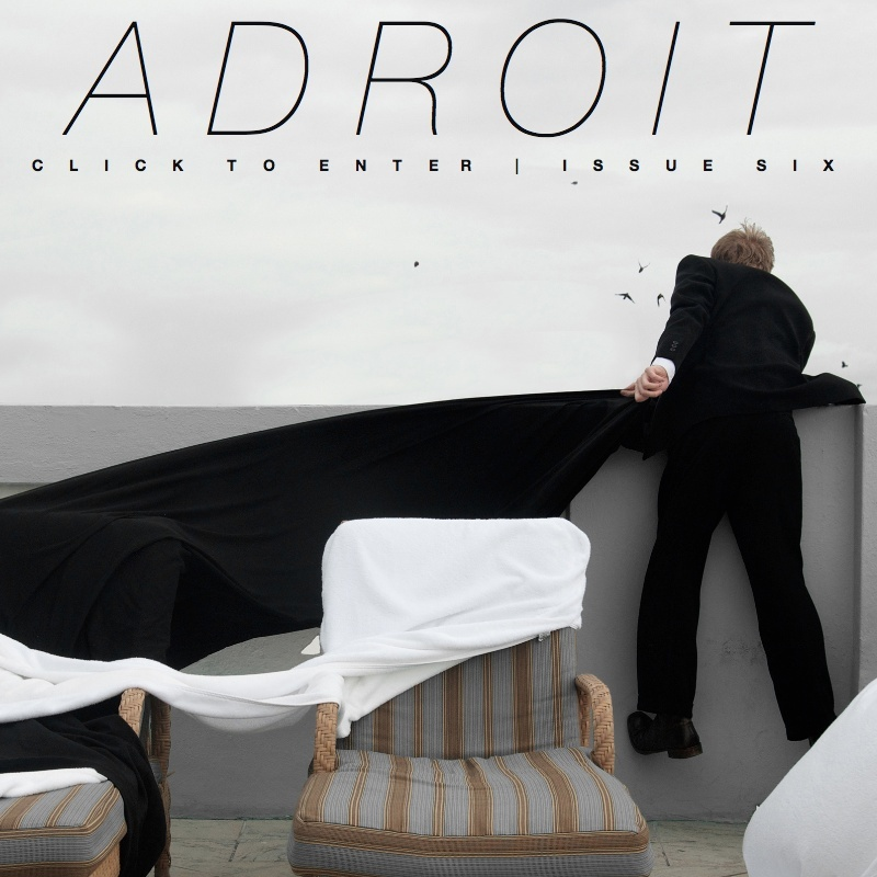 The Adroit Journal - Issue Six (Winter 2013)