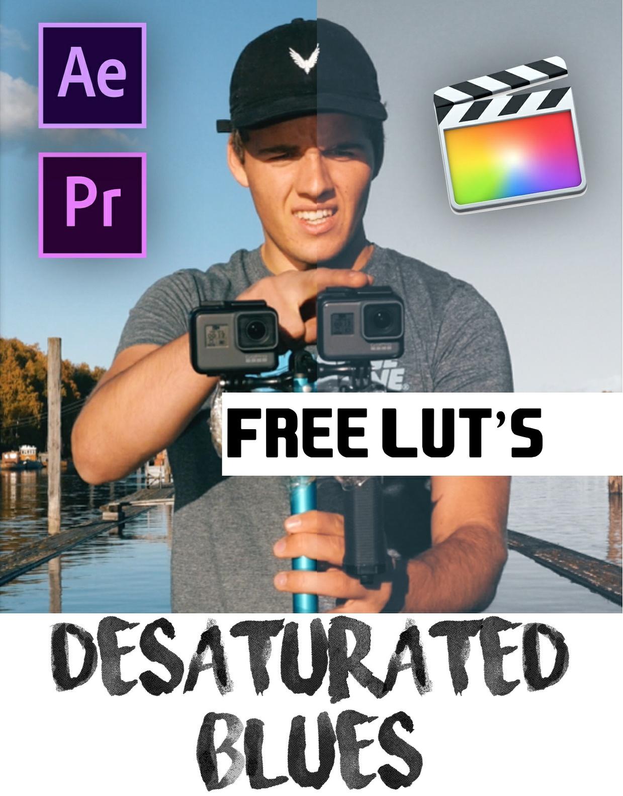 FREE TRAVEL LUT // Desaturated Blue // SAM KOLDER INSPIRED LUT