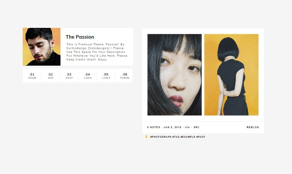 Passion: Tumblr Theme
