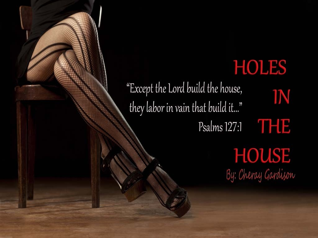 HOLES IN THE HOUSE