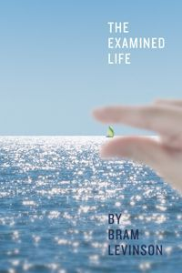 The Examined Life Audiobook (One File, Chapters Undivided) by Bram Levinson