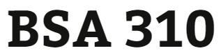 BSA 310 Week 3 Learning Team: Bubble Films Status Report