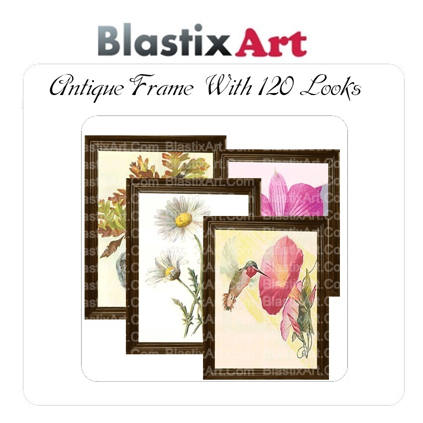 Antique  Frames  With 120 looks