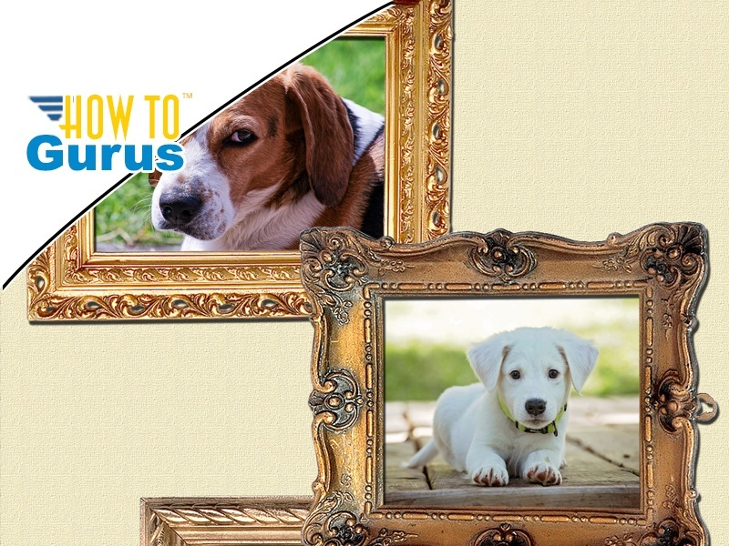 Photoshop Elements Layers for Beginners : Overlapping Frames Scrapbooking Page Tutorial 15 14 13 12