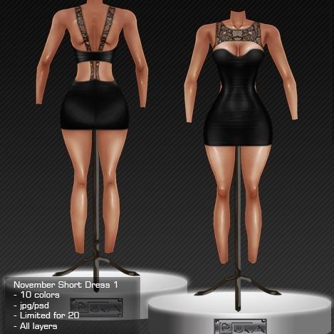 2013 Nov Short Dress # 1