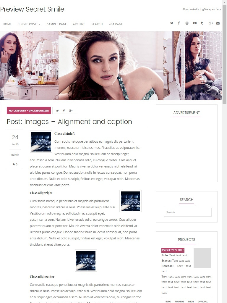 WordPress Theme #02 (Responsive)