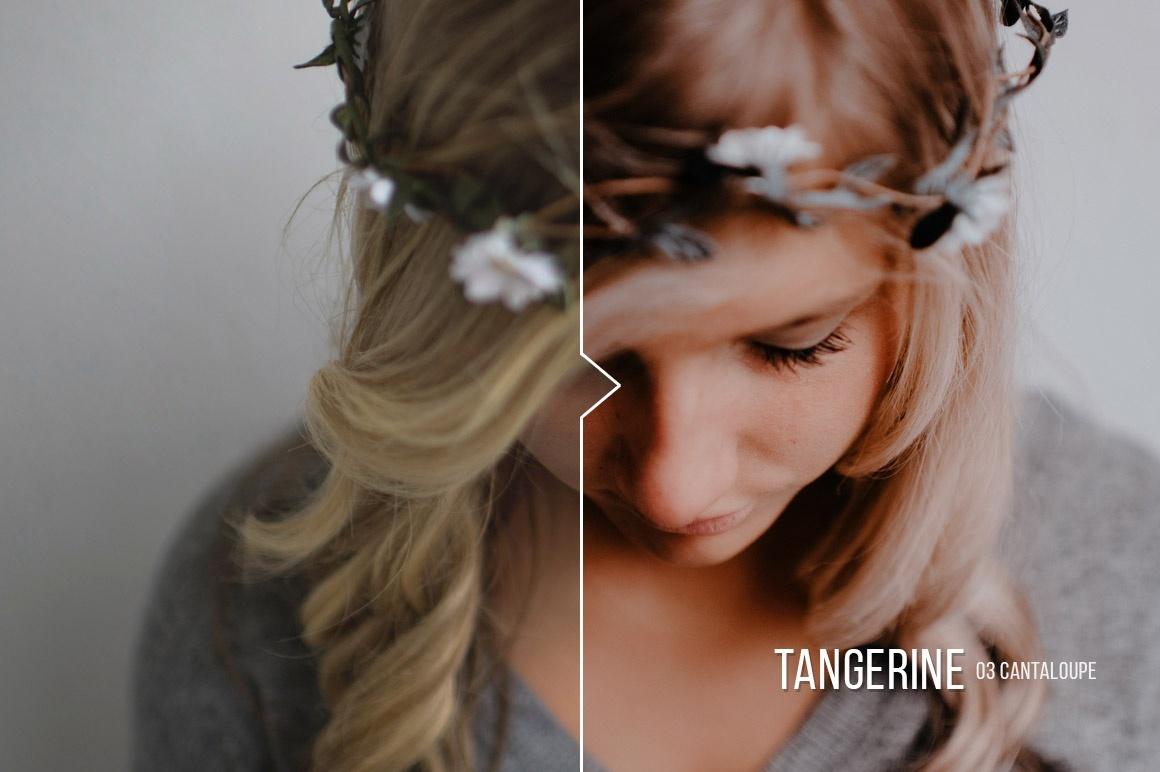 Tangerine ACR & Lightroom Presets