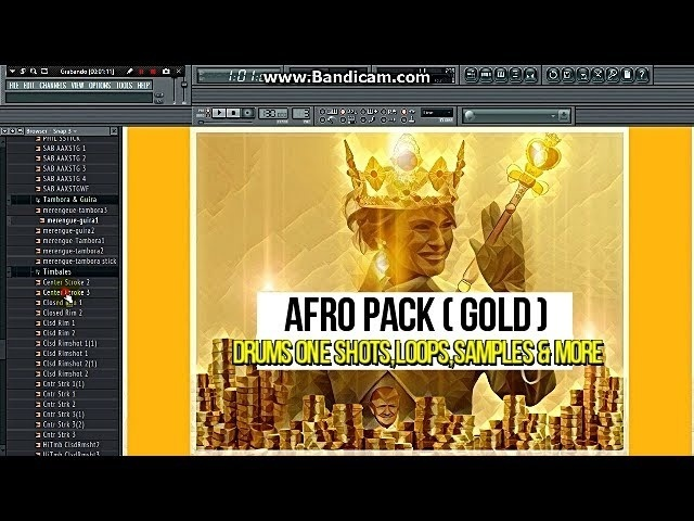 AFRO TRAP KIT - DOWNLOAD - LOOPS - SAMPLES - ONE SHOT AND MORE - 2017 PACK