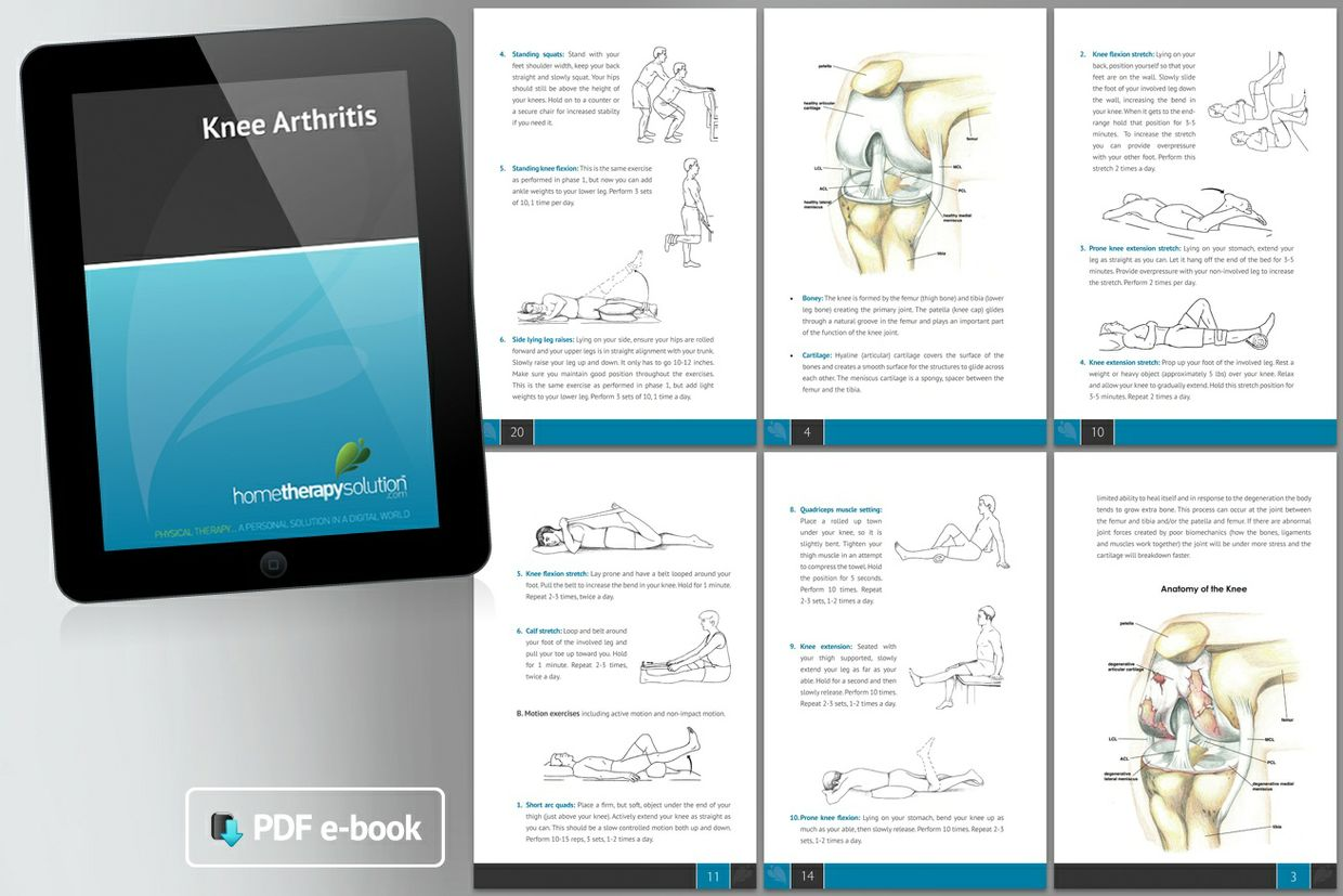 Knee Arthritis Therapy Book