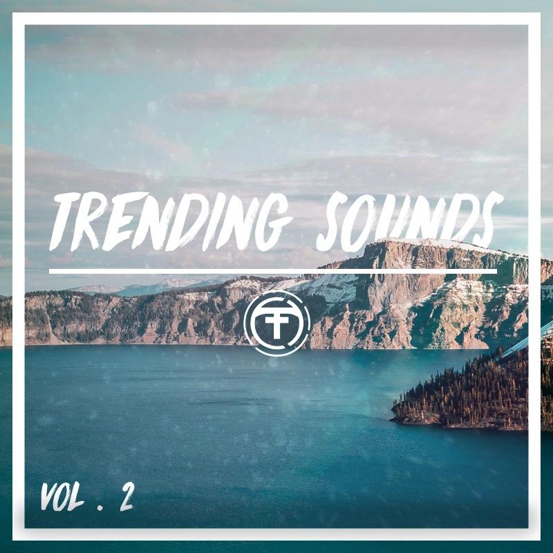 Tiik Sounds Trending Sounds Vol 2 (Serum Presets)(Standard Edition)