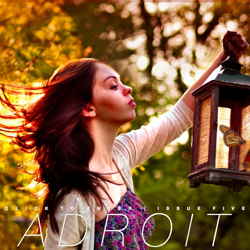 The Adroit Journal - Issue Five (Fall 2012)