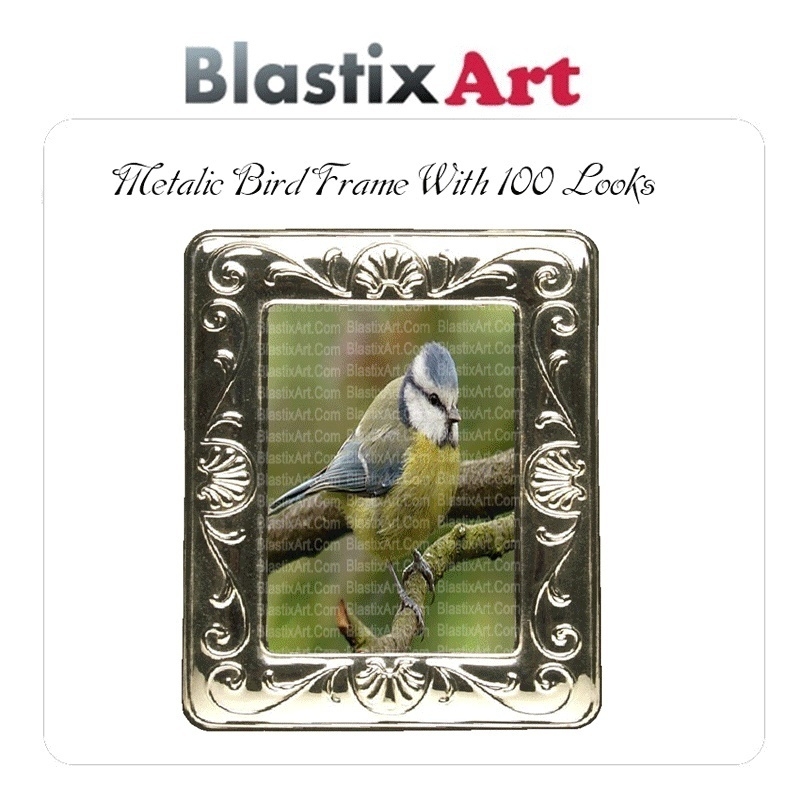 Metalic Bird frame With 100 Looks