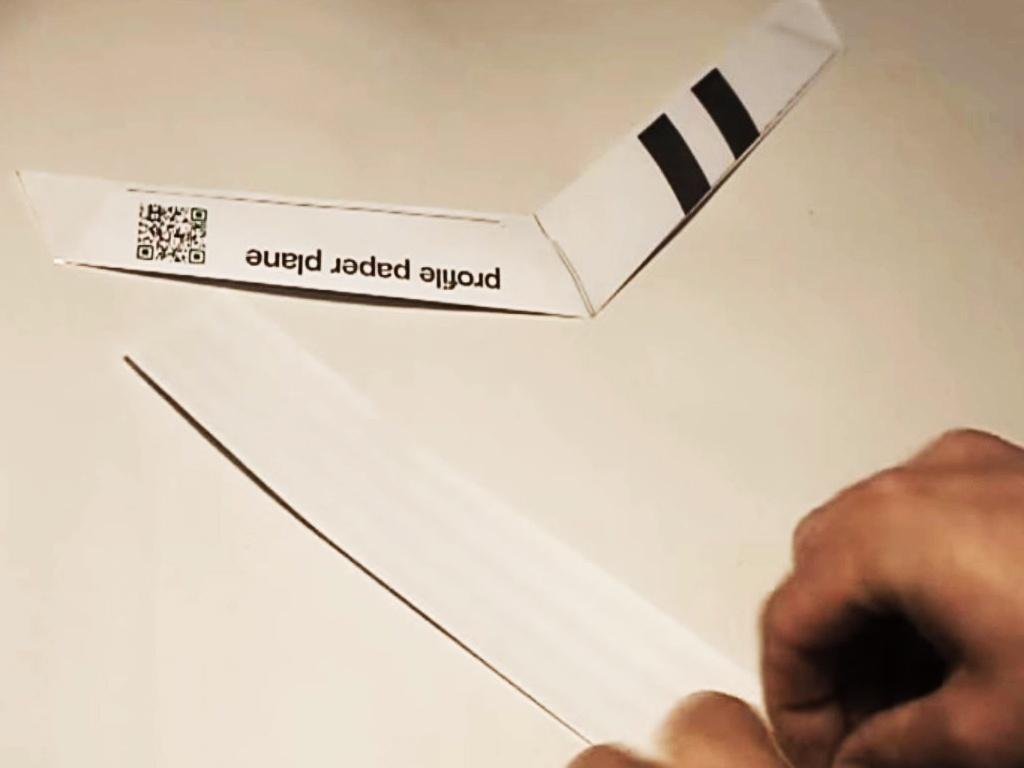 Profile Paper Plane