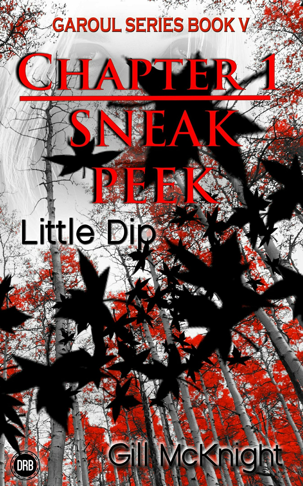 Little Dip by Gill McKnight - Chapter 1 sneak peek (mobi)