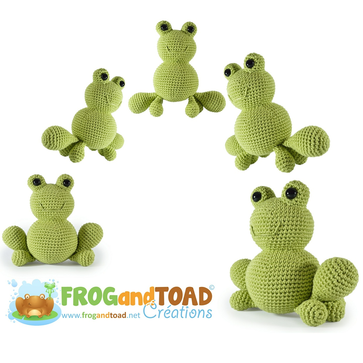 ANURA la grenouille / the frog - FROGandTOAD Créations ©